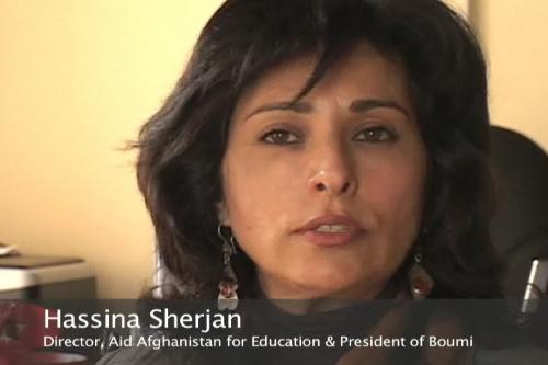 Afghan experts